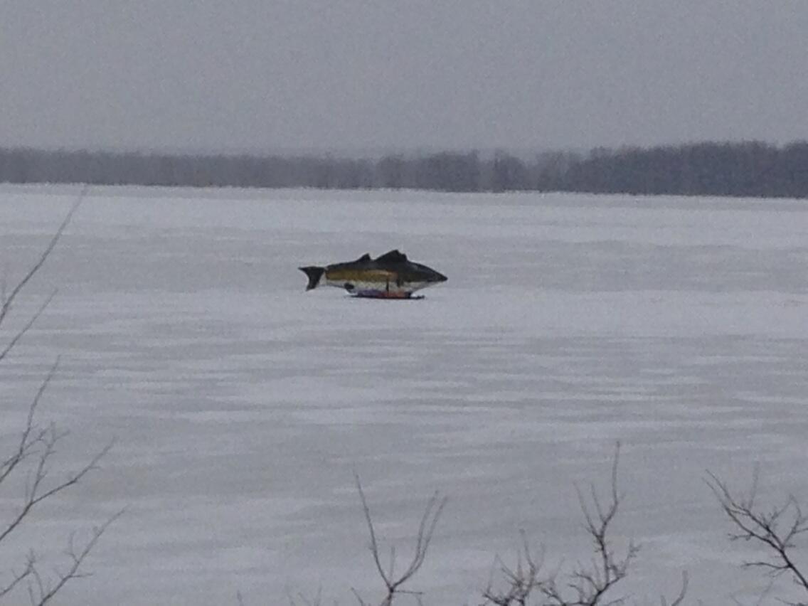 Fishing lake simcoe fishingsimcoe on twitter for Lake simcoe fishing report