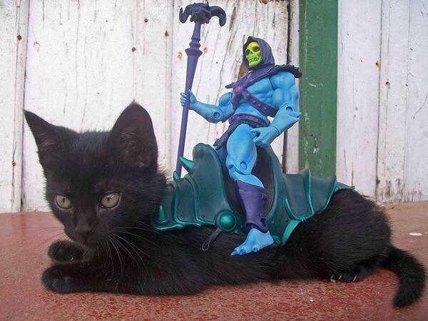 Who needs the real accessory when you have the cat . . . #Skeletor #HeMan http://t.co/LO4gErDyZc