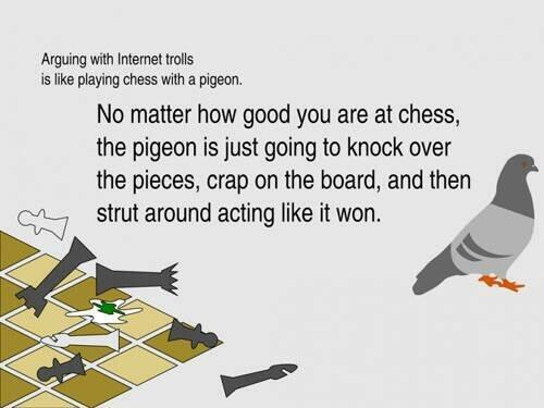 """@MrGreenGus: Chess Playing Pigeon. Best descriptive name for internet trolls. http://t.co/3POcUytoRJ"""