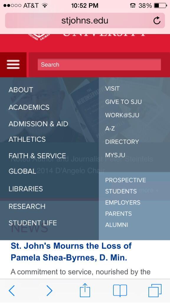 st john's university mysju