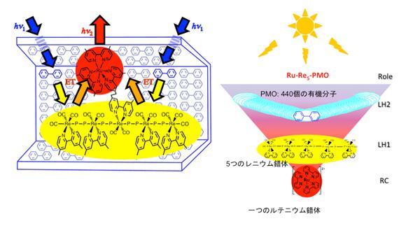 東工大と豊田中研、光を捕集する「人工の葉」を開発。植物の光合成に匹敵する人工光合成にめど http://t.co/eF2qNOwUxd http://t.co/c8dC8mgZgB
