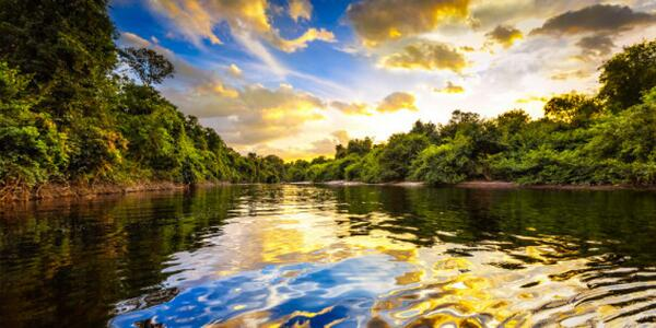 世界で訪れたい場所アマゾンのレインフォレスト。美!The Amazon Rainforest is just one of the 17 places U have to visit. http://t.co/wzTpDcxyk3  http://t.co/autM5D2wxq