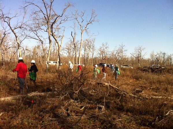Wow! Look at us!  Tree planting in full swing!  It's going to be a great day!  #ISFCommCrew http://t.co/lGsIaFuUHN