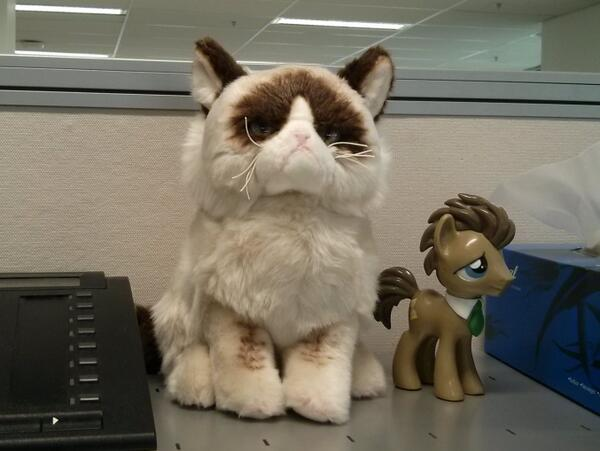 Grumpy Cat is now guarding my office desk from anyone trying to give me more work. http://t.co/073iemE64Z