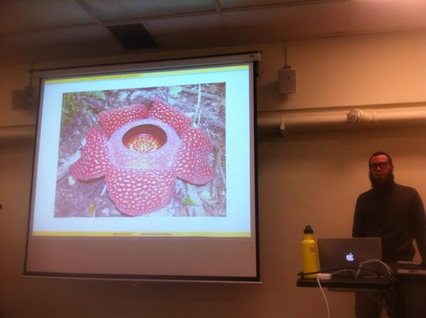 Biggest flower #mlibres http://t.co/m9EWzfRngy