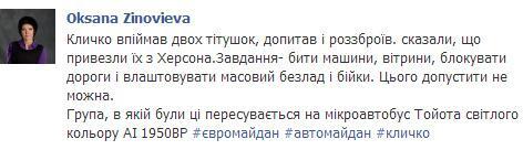 """Титушки по всему Киеву. На них """"охотится"""" Кличко, автомайдан и собаки."""