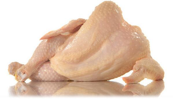 地鶏のグラビア写真が流行っていると聞いて… #グラドル地鶏部  pic.twitter.com/Sq76kB3dHS