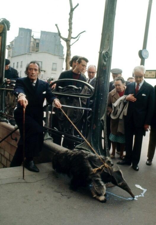 Salvador Dalí walking his anteater, Paris, 1969 http://t.co/DtUkGkkwGS