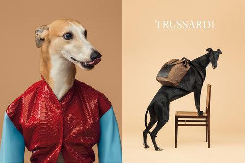 Trussardi présente une campagne avec une égérie particulière ! http://t.co/HKfMJohEPq #trussardi http://t.co/IQrptYUd25