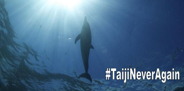 I stand with the @Dodo to stop the slaughter of dolphins in Taiji http://t.co/lLgpRMAA8z #TaijiNeverAgain http://t.co/OzlIysW0bC