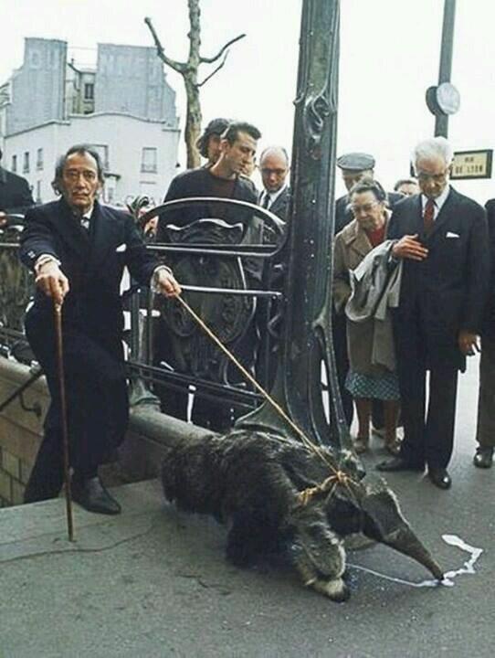 Hace un cuarto de siglo murió Salvador Dalí y su locura genial. Aquí pasea por París con su oso hormiguero. http://t.co/D0C3s95Gzf