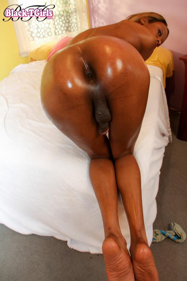 Oiled shemale ass