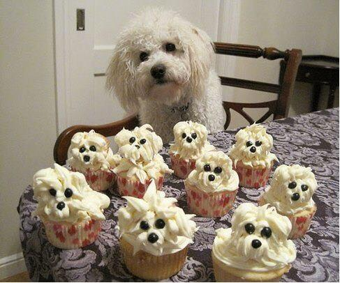 """@vitorinadw: @Mummyrusty For Bobbys next birthday perhaps?!! x http://t.co/7U6aXeTXTi""brilliant I love them!"