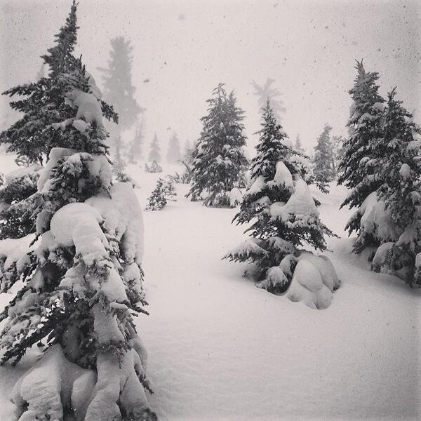Current state of affairs: IT'S DUMPING! #snow #snowing fan photo @ZKunst http://t.co/jPhegmyBG2