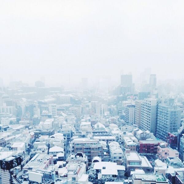 Tokyo skyline in white snow. http://t.co/FFahaBgr1T