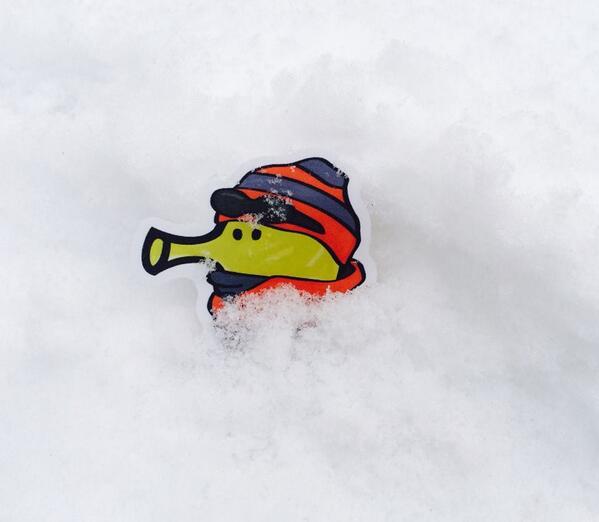 snow! http://t.co/xdBVyZCdaj