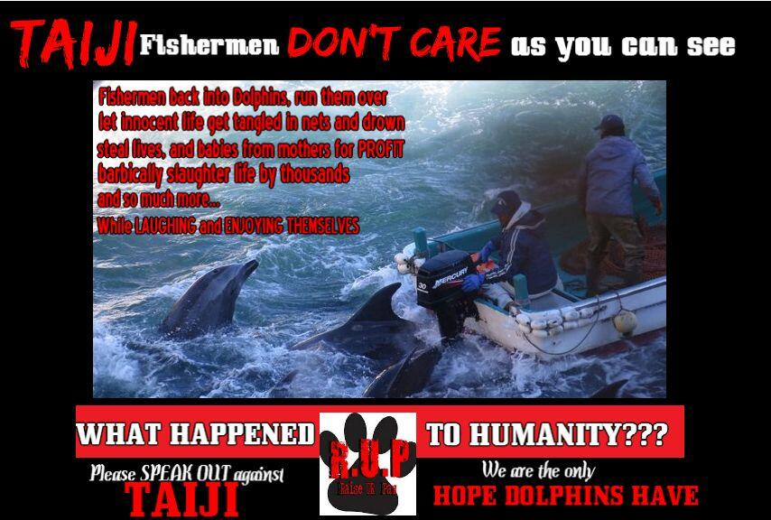 RT @STOPANIMALABUS5: @DENISE_RICHARDS We all need to be voices - #RT Stand Up Against #TAIJI - We need to STOP DOLPHIN SLAUGHTER/SLAVERY - …