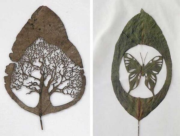 Extraordinary Leaf Art by Lorenzo Duran >> http://t.co/kxvKcENAyx  - http://t.co/OdpNgmrGo8