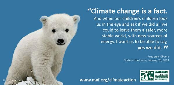 Take action to halt pollution that drives climate change and puts polar bears at risk. http://t.co/Q1SMBpLbwP http://t.co/MvmUTVSKSk