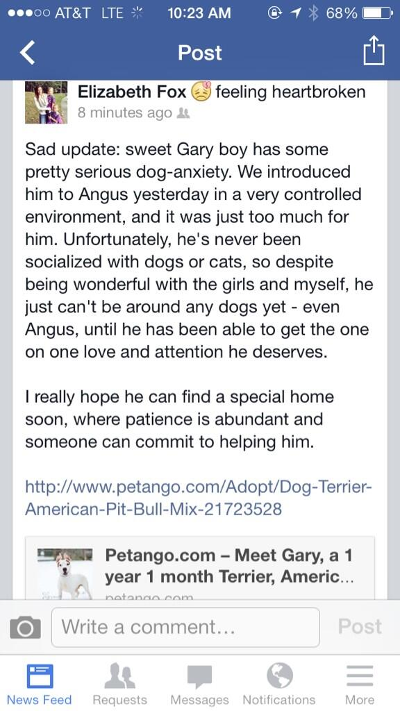 About Gary. Baltimore, he can be found on http://t.co/zbjnwMXKHB. Please, someone help this sweet pup. #savegary http://t.co/ghuIchiku3