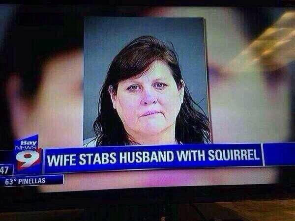 Wife stabs husband with squirrel