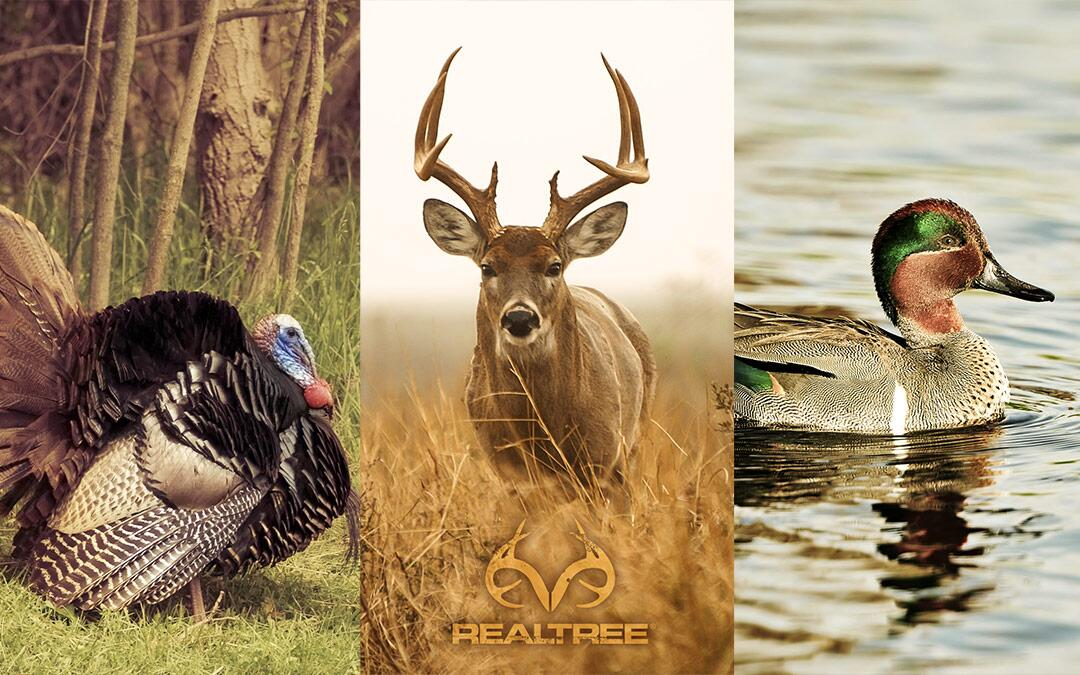 Realtree on Twitter New free wallpaper downloads are available