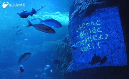 相模湾大水槽にメッセージを投影できます。サイトで事前申込受付、無料です。【恋する水槽 ~女性から男性へのロマンティックメッセージ~】 http://t.co/8MNklZOCCZ 携帯 http://t.co/5QK62eE27q http://t.co/nTwaUJiA5o