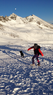 Snowball fetch with the coolest dog. He is a rescue dog that has saved people from avalanches. He is now my friend. http://t.co/AwfJr1sAWU