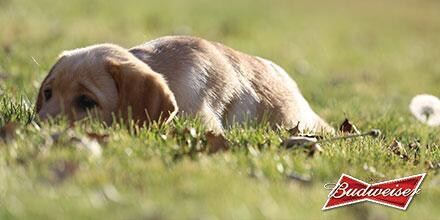 It's a perfect day to have the best time. #BestBuds