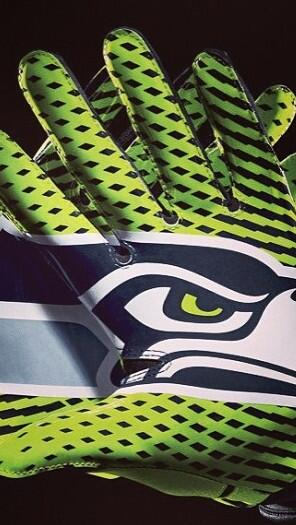 Nothing else matters today. #GoHawks http://t.co/kZIBu40GD3