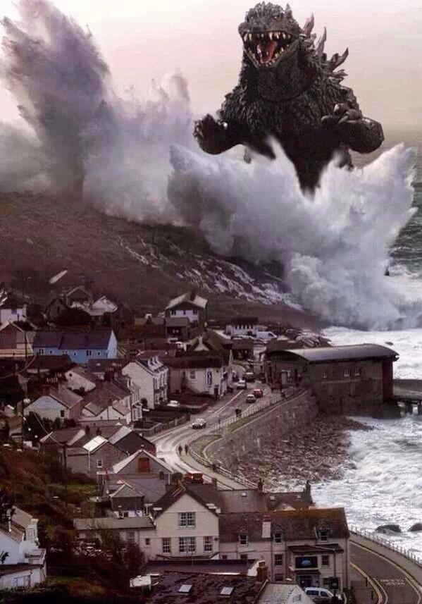More marine problems spotted coming ashore in West Cornwall  Picture: Luke Bazely https://t.co/1wInhV550B http://t.co/pNtndWabUH