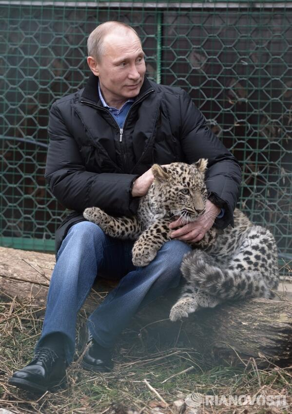 You have a problem with the Olympics? TALK TO MY LEOPARD. http://t.co/g5fzj5JoNW (via @RolandOliphant)