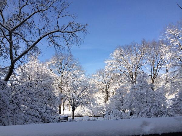 Wow! @CentralParkNYC is a must see today! Absolutely stunning! #nyc #snow #nofilter http://t.co/34UnxW3PFP