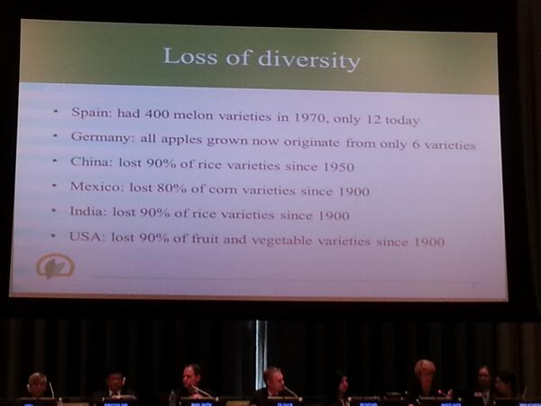 """@mathildebouye: Maria Haga alerts #OWG8 to dramatic #biodiversity loss. USA lost 90% of fruit vars... http://t.co/1EKj9yRJ9z"" @CropTrust"