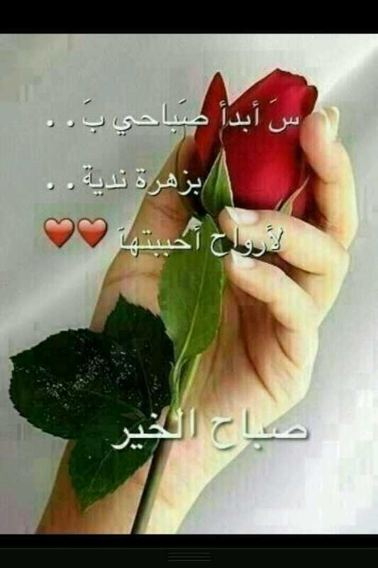 استغفر الله العظيم On Twitter صباح الغلا كله Http T Co Nvzlunpb9g