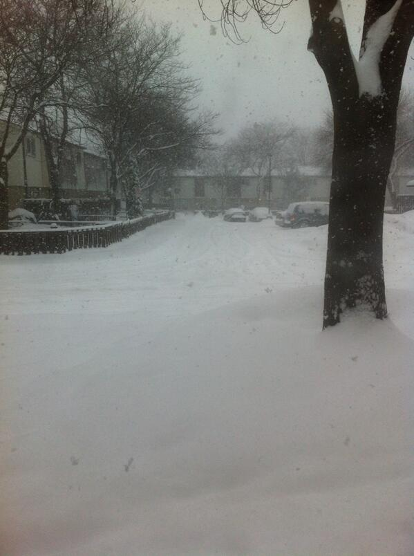#citystorm @CityNatasha @CityNews this is in my TH complex #Mississauga hope hubby can get in later http://t.co/rwCm0Zhx78
