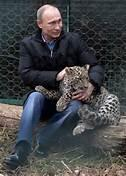 @nycjim Putin has a sanctuary for endangered Persian Leopards. No humanitarian help for stray dogs. @PricelessBiach http://t.co/QVvzVYwOI4