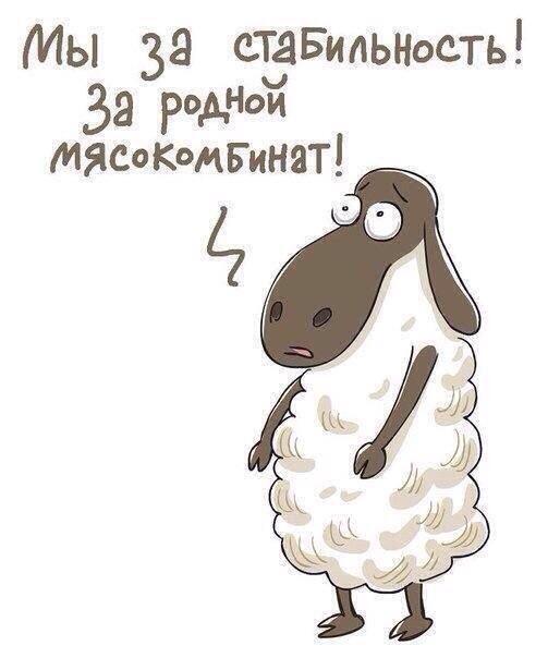 """Комитет по информации заставляет редакции коммунальных СМИ размещать на первых страницах призывы """"СТОП Майдан"""" - Цензор.НЕТ 6640"""