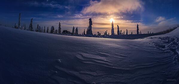 樹氷帯を進みます。気温はマイナス20度C。 pic.twitter.com/gpL2Nts0nt