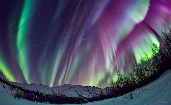 北極圏の夜空を埋めつくし、幾重にも重なるオーロラ。 pic.twitter.com/RG7hOT4o60