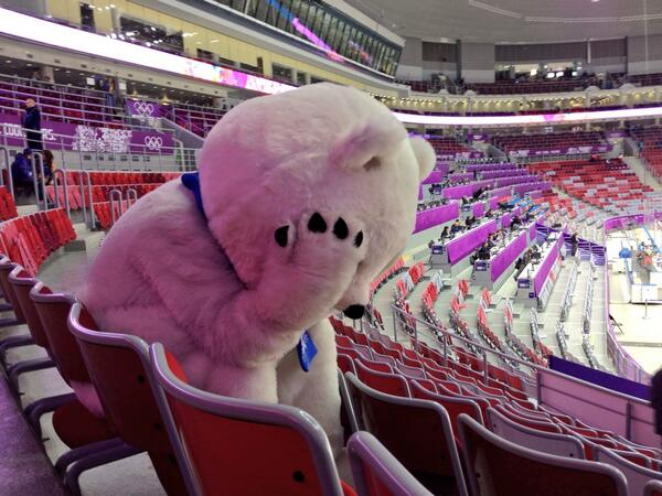 #Sochi2014 Bear is inconsolable after Russia's loss to Finland in the #IceHockey... :-( http://t.co/8nOAw3Cqdr