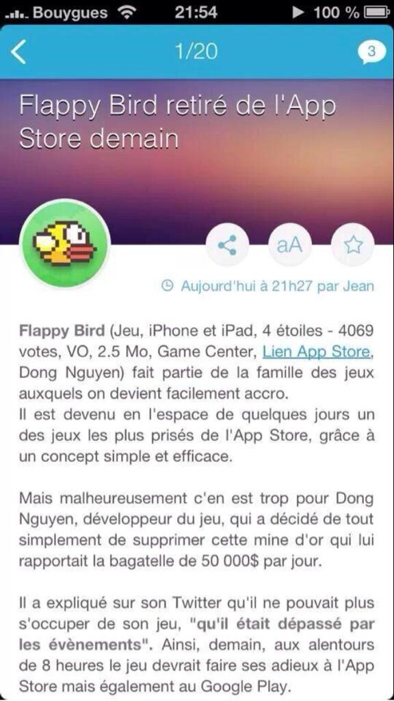 Grosse chatte Flappy