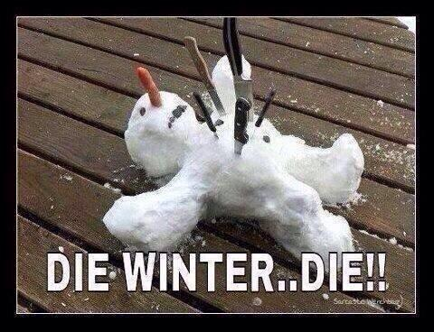 NO MORE SNOW ! http://t.co/prZLuGfEHA