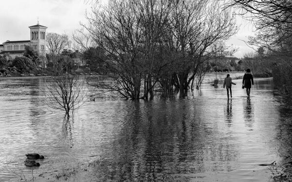 Walking in the Thames - flooding today at Kingston / Hampton Court. http://t.co/ICXorLb3WA