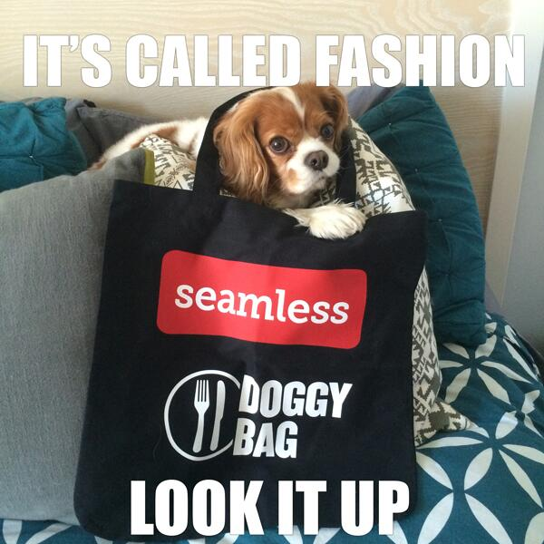#NYFW & Westminster Dog Show this week? We're in. RT this by 4pm for your chance to win a luxury Seamless #DoggyBag! http://t.co/6ajvk1prES