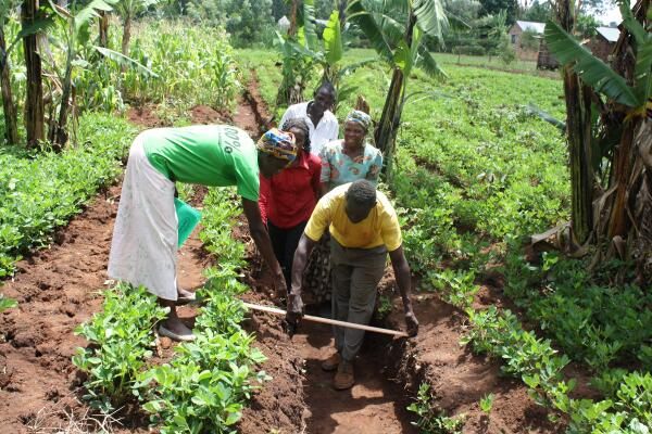 Agroforestry Pic of the Day: Learning to measure soil carbon w/ #ViAgroforestry and @cgiarclimate #WCA2014 http://t.co/F3wUDeFyhv