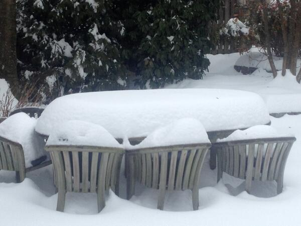 Backyard picnic cancelled. #SoWhiteOutside http://t.co/YqK3ldW9Cj