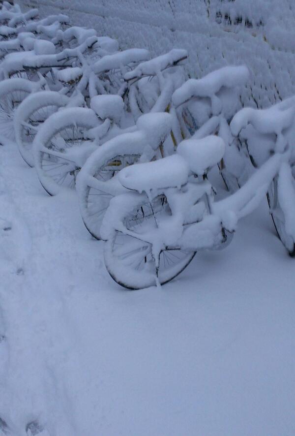 俺の自転車どれだよ http://t.co/9opm9QLDzb