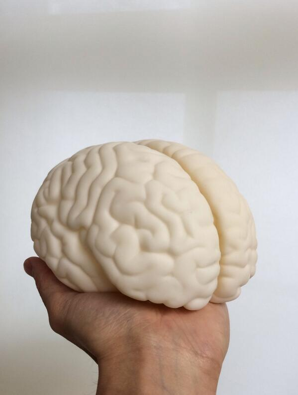 研究室にホワイトチョコレートが届きました…!びっくりして頭が真っ白