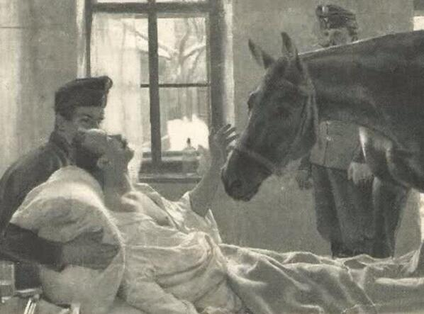 I found this a very moving picture of a wounded WWI cavalry man meeting his horse in the field hospital. True love. http://t.co/ZccR9oLYNn